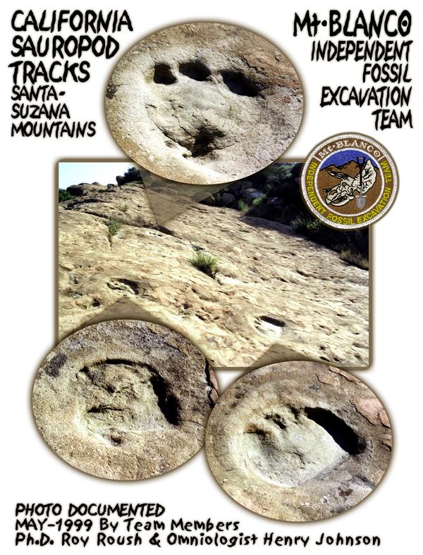 Sauropod Tracks CALIFORNIA SAUROPOD TRACKS
